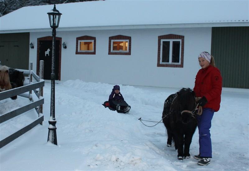 Snö och pulka Stuteri Pettersbacka